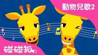 長頸鹿    動物兒歌2   2017   碰碰狐Pinkfong