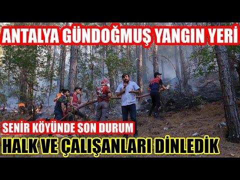 Antalya Gündoğmuş Orman Yangın Yerinden Halkla Röportaj