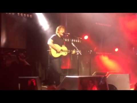 Ed Sheeran - Grade 8 - Elton John AIDS Foundation Academy Awards Viewing Party - 3/2/14