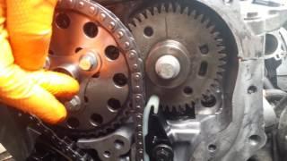 Замена цепи ГРМ Nissan X-Trail своими руками: инструкции, фото и видео