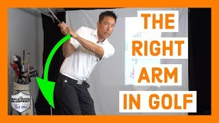 What Should My Right Arm Do in the Golf Swing?