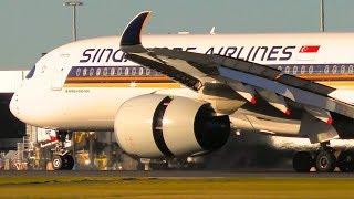 AMAZING Airbus A350 CLOSE-UP Landings   Melbourne Airport Plane Spotting