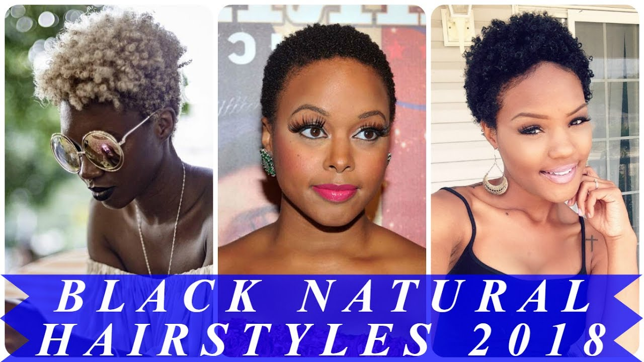styles for natural black hair 20 stunning hairstyles for american 5916 | maxresdefault
