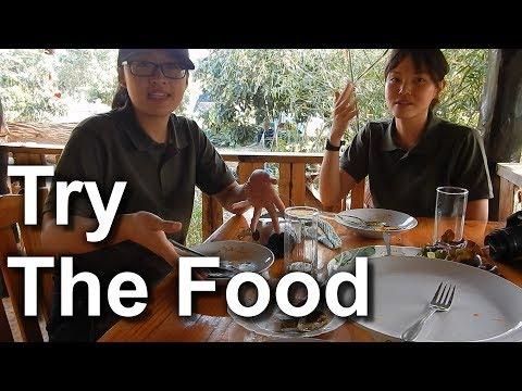 Food 2 Farm Visits Lek And Greg Vegan Camp