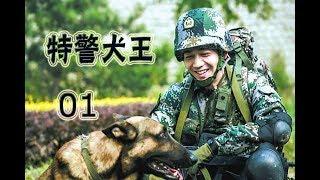 特警犬王 第1集 | 最好看中国军旅警犬题材剧