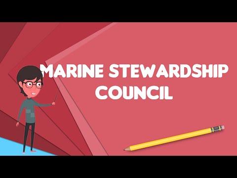 What is Marine Stewardship Council?, Explain Marine Stewardship Council