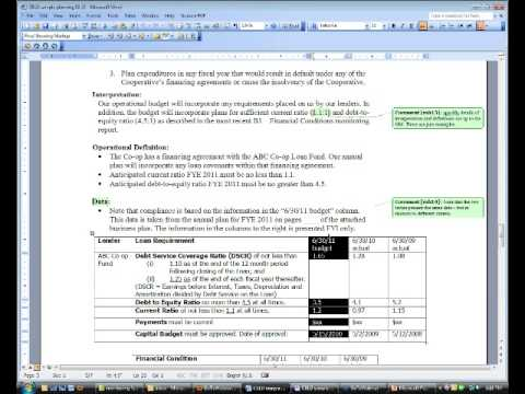 GM Report Support 02 - Asset Protection Planning and Budgeting