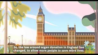 Organ Donation Law in England