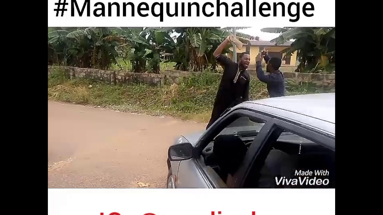 The Lively Mannequin Challenge!!