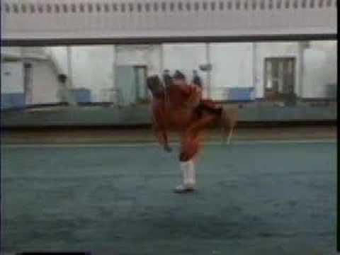 American Shaolin: Coach Cheng