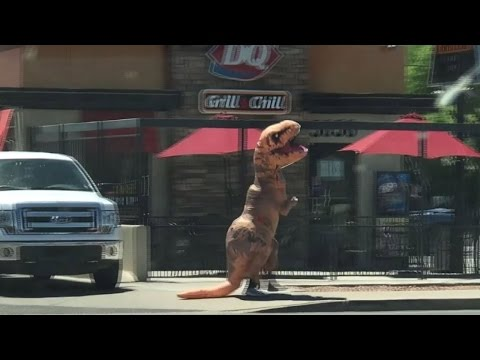 Person in T. Rex Costume Cools Off at Dairy Queen