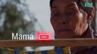 Día del Respeto a la Diversidad Cultural: Palabras en tapiete - Canal Encuentro