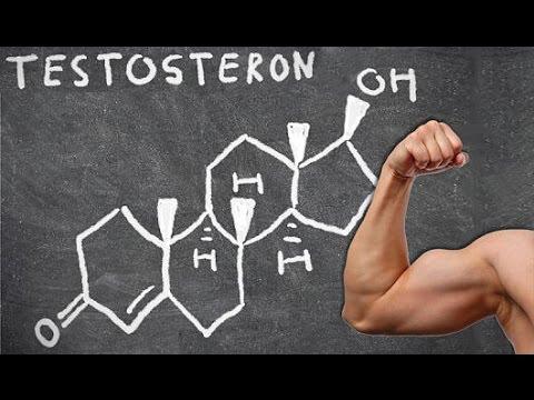 Stickstoffhaltige Aminosäureverbindungen zur Gewichtsreduktion