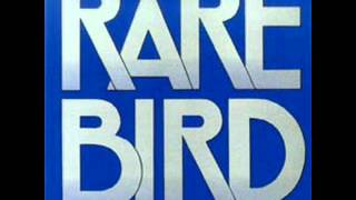 Watch Rare Bird Down On The Floor video