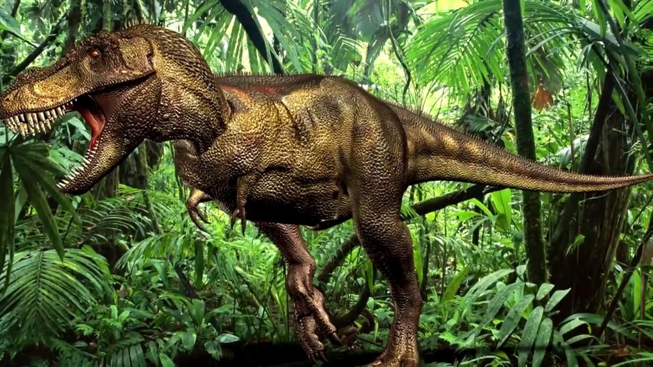 Картинки по запросу Тираннозавр