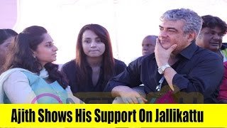 Ajith Shows His Support On Jallikattu - Only Top Star To Join For Jallikattu Protest
