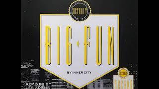 """Inner City - Big Fun  ( 12"""" Remixes ) 1988"""