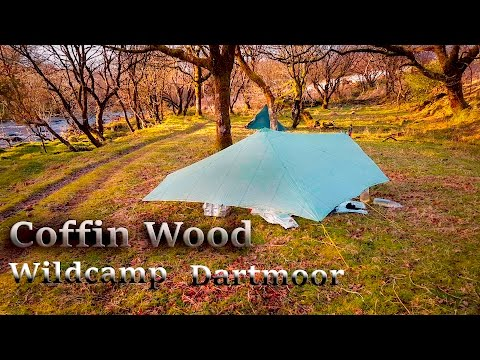 Wild camping in Coffin Wood Dartmoor