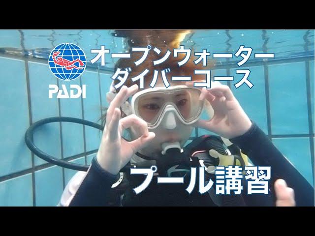 プール講習(約4時間)の動画