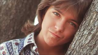 DAVID CASSIDY   HOW CAN I BE SURE