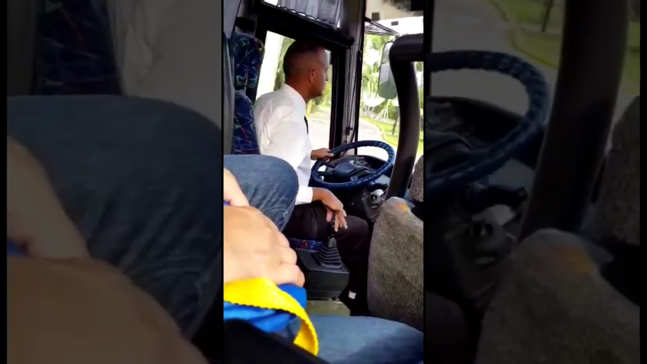 Gay Bus Driver  YouTube
