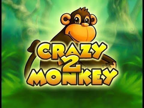 игровые автоматы crazy monkey казино