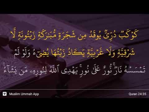 QS  24:35 (surah 24 ayat 35) » QS  An Nuur » Tafsir Alquran