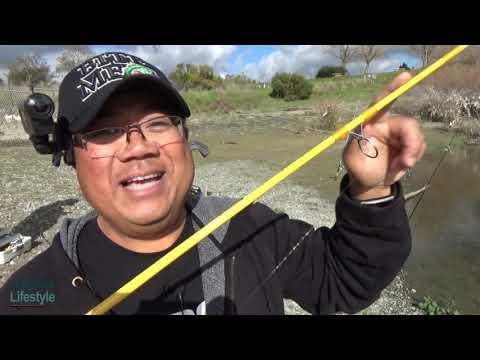 Good And Bad Fishing At Quarry Lakes