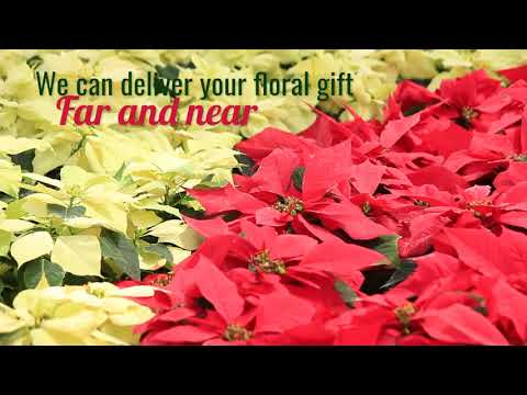 Flowers are a living gift - East City Flower Shop Peterborough