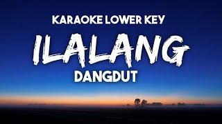 Gambar cover Dangdut Ilalang Karaoke Nada Rendah