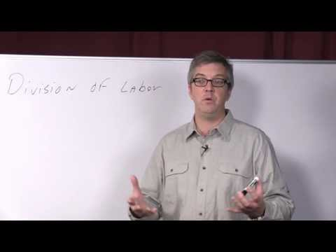 Dr. William Kline on the Division of Labor