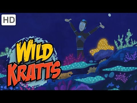 Wild Kratts - Creatures Of The Caribbean
