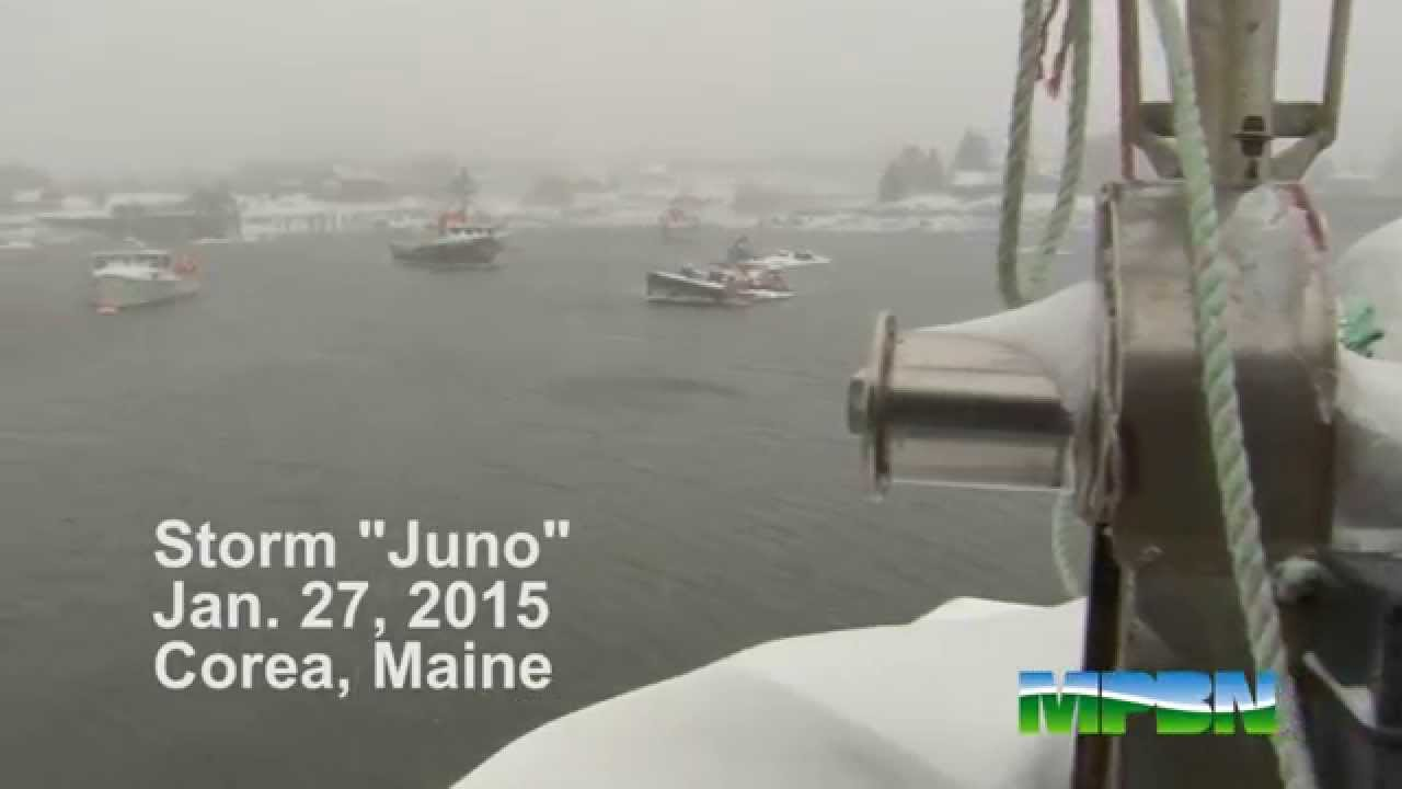 Winter storm juno in the downeast fishing village of for Maine out of state fishing license