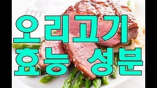 오리고기(duck meat) 효능, 성분