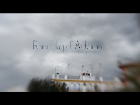 Rainy day of Autumn