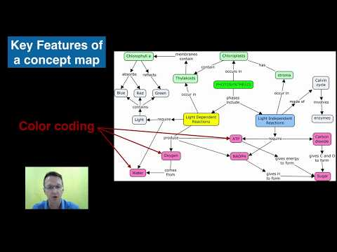 Concept Mapping with Cmap
