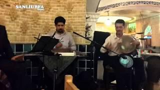 iran shiraz da müzikli restorantta bir şarkı