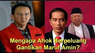 Mengapa Ahok Berpeluang Gantikan Maruf Amin?