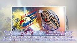 DEL: Adler Mannheim - Straubing Tigers LIVE im TV, Stream, Ticker