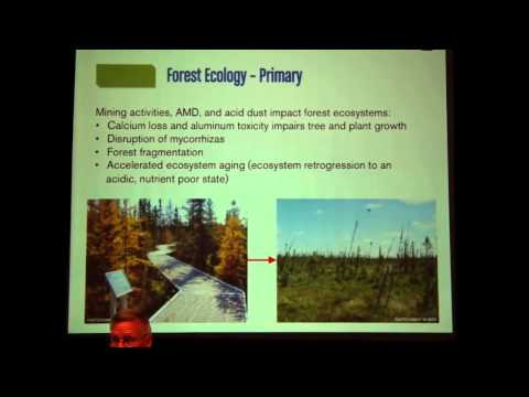 Dr. Lee Frelich - Effects Of Sulfide Mining On BWCA