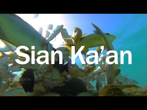 Conexión Destinos | Sian Ka'an: La puerta del cielo