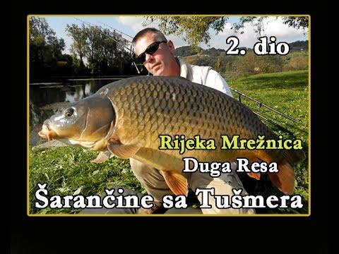 ŠARANČINE SA TUŠMERA_RIJEKA MREŽNICA 2. dio / V.S.P. / Fishing Croatia.TV