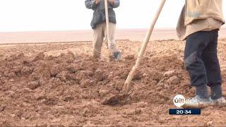 أخبار حصرية - من الماء والرمال.. مدينة صنعها السوريون في الصحراء