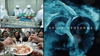 Еда из Поднебесной, Китая - Среда обитания | Документальный фильм