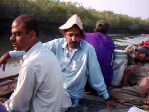 Kharo Doro Mangroves, Gharo, Sindh