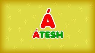 2.   «Á» әрпі - ÁTESH - ПЕТУХ. Казахский Алфавит на латинице.