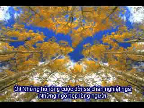 Nhung Vet Chung (Cover)