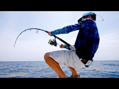 Monster Shark Spinning Tackle Fishing Challenge