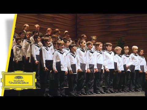 Vienna Boys Choir - Merry Christmas From Vienna - Rolando Villazón (Trailer)