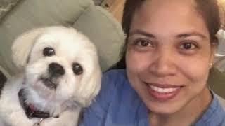 PUDPUD, THE LHASA APSO DOG BREED | LISA BUENA TV